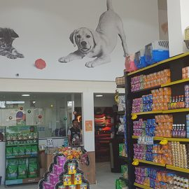 petshop-the-dog-oliveira-freire-4